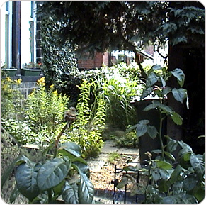 garden designs textured garden design kirkstall